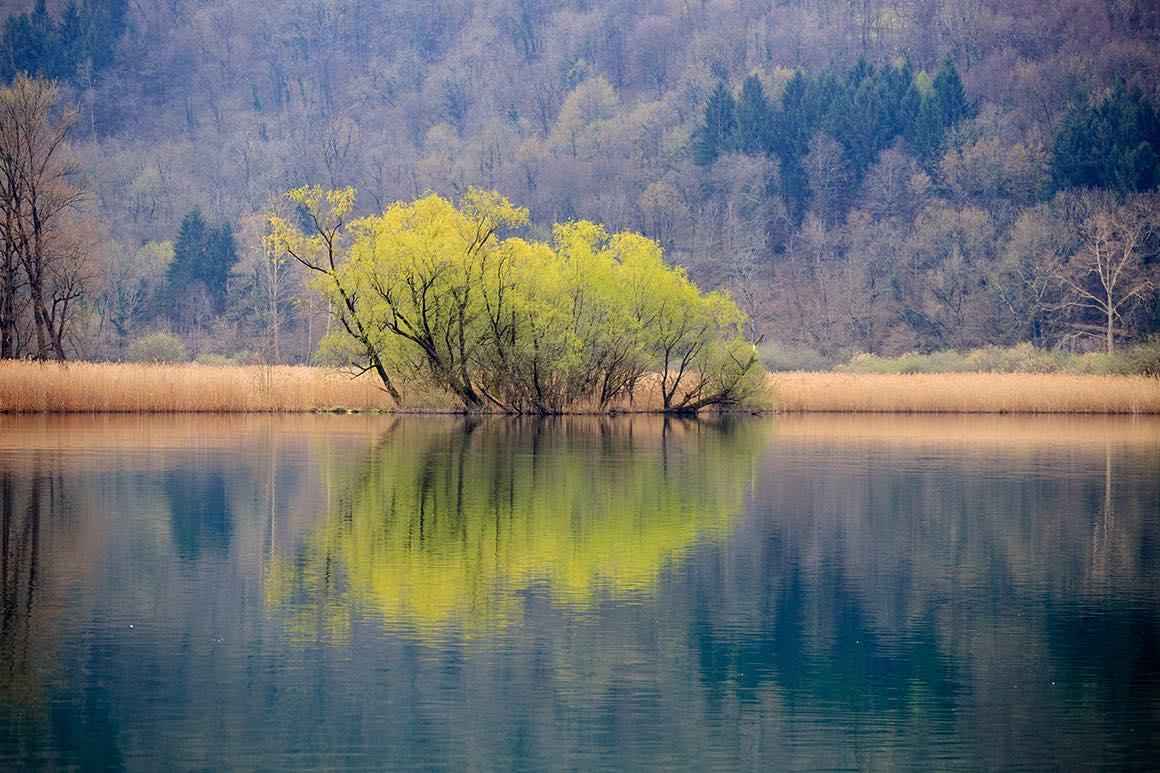 Day Tour Milan to Lake Como - Nature