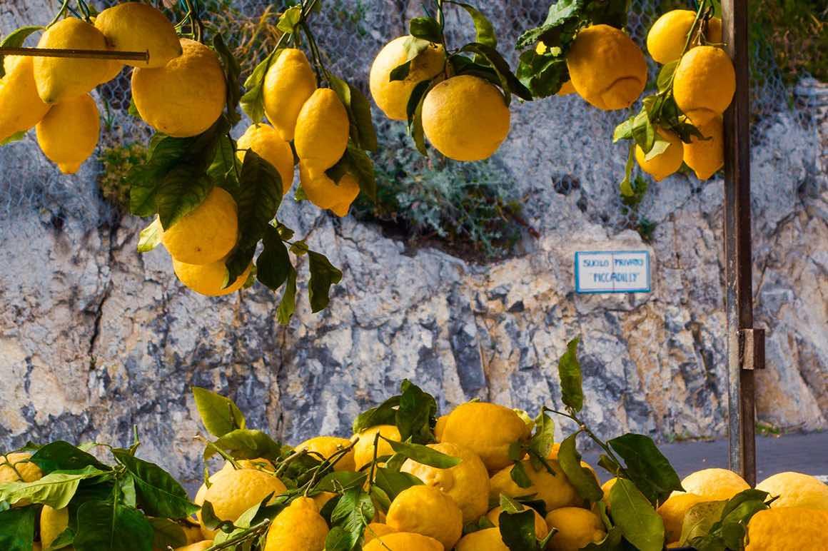 Day Tour Rome to Amalfi Coast - Lemon Tree