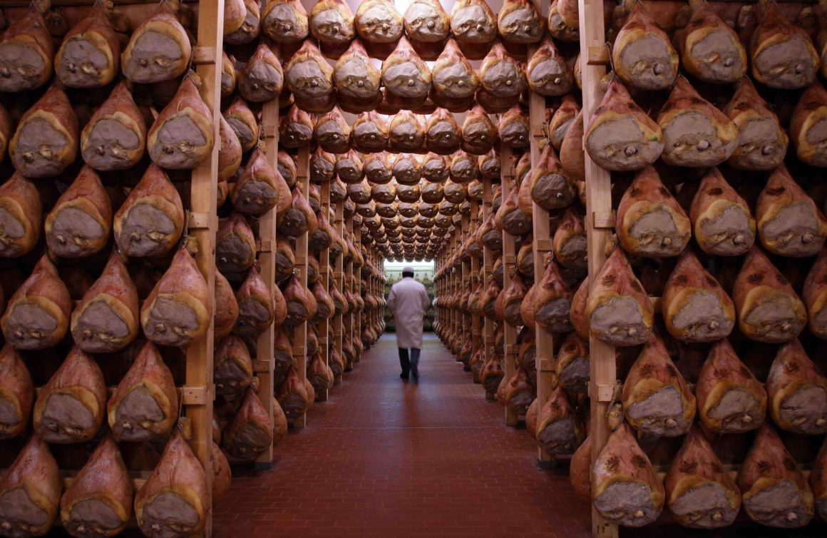 Transfer Milan to Florence with stop in Parma - Ham